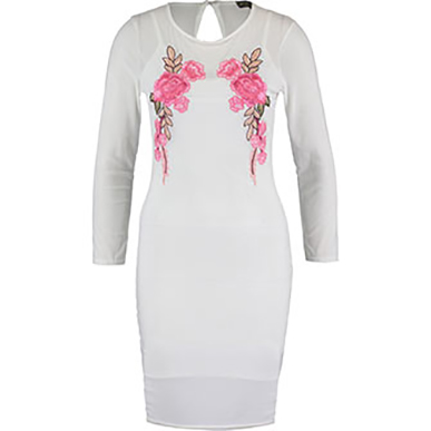 Cream Mesh Embroidered Sheath Dress