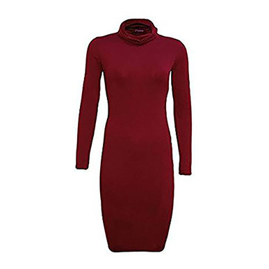 Burgundy Stretchy Body Hugging Roll Neck Dress